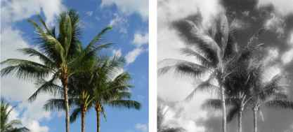 Infrared Photo Effects